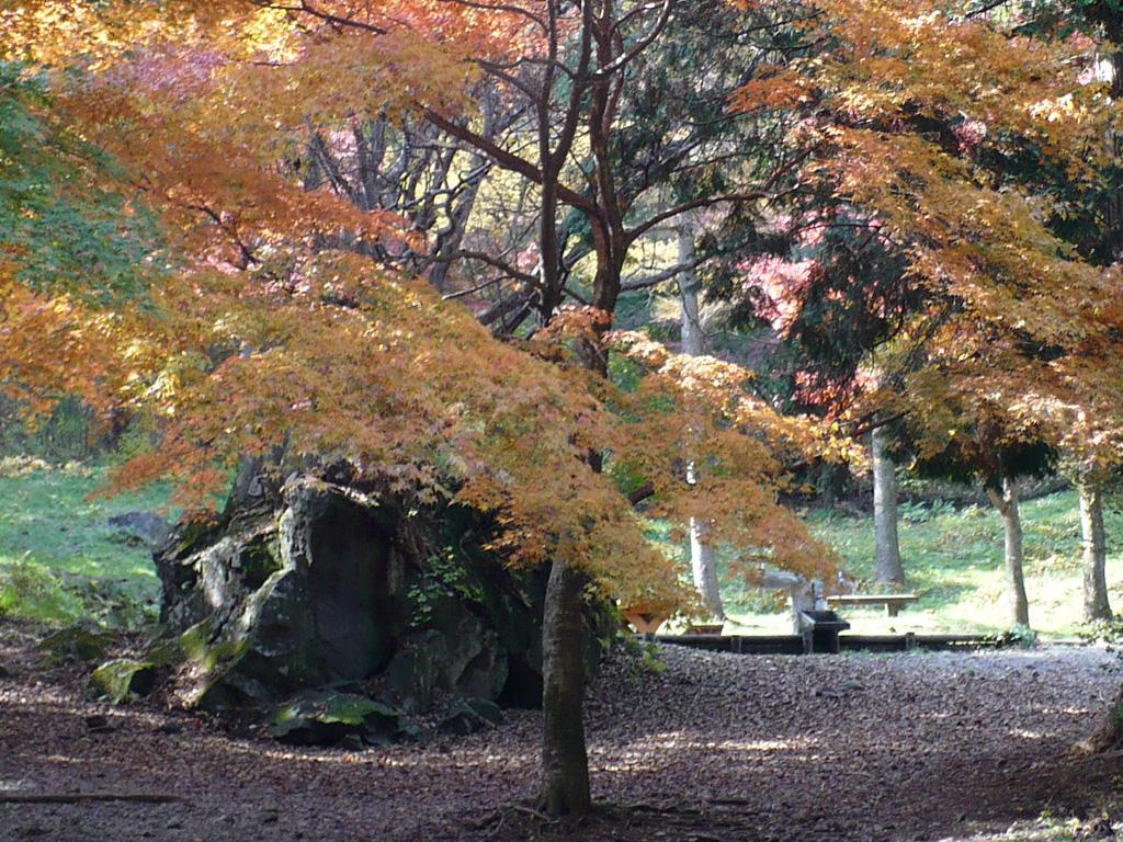 県立伊香保森林公園