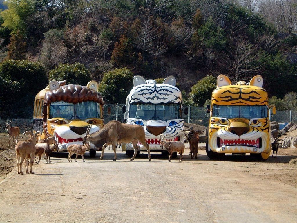 野生の王国群馬サファリパーク